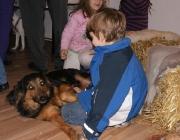 Hunde - Kinder / Kinder sollten einen Hund weder schlagen, noch ihm an den Ohren ziehen, noch ihm sein Spielzeug oder gar Futter wegnehmen dürfen und sie dürfen auch nicht in den Hundekorb.