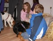 Hunde - Kinder / Ein kleines Kind kann keine Hunde erziehen, also müssen die Eltern den Hund im Auge behalten, und ihm beibringen, was er mit einem Kind machen darf und was nicht.