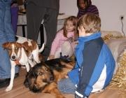 Hunde - Kinder / Und ein Hund kann keine kleinen Kinder erziehen, deshalb müssen die Eltern die Kinder im Auge behalten und ihnen beibringen, wie sie angemessen mit einem Hund umgehen.