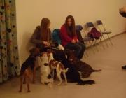Tiersitting Wien - Kids & Dogs