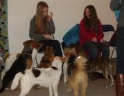 Betreute Tiere Wien - Kids & Dogs